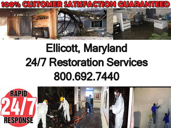 ellicott contractor services